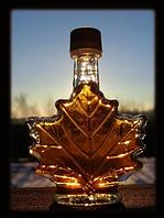 Canadian Innovation - Maple syrup